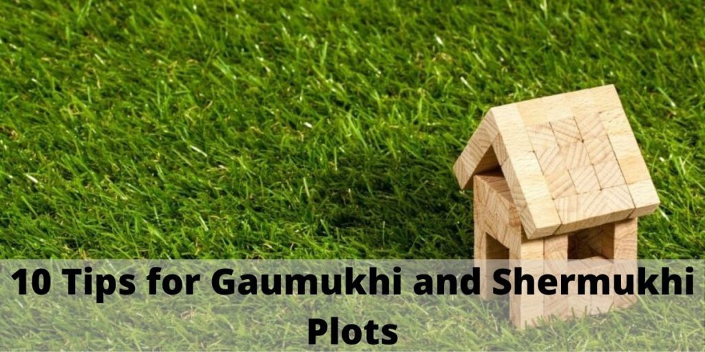 10 Tips for Gaumukhi and Shermukhi Plots